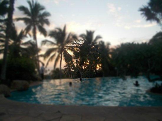 Vivanta by Taj - Green Cove : Pool at sunset