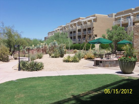 JW Marriott Desert Ridge Resort & Spa Phoenix: Rear of hotel and botanical darden