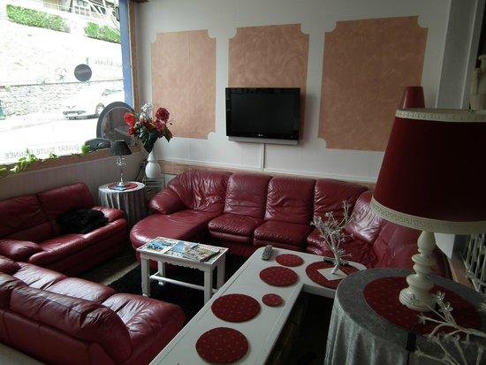 Hôtel Chalet Saint Louis : le coin salon télé