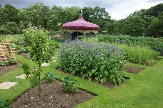The Yorke Arms: vegetable garden