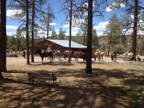 Geronimo Trail Guest Ranch: View of the barn
