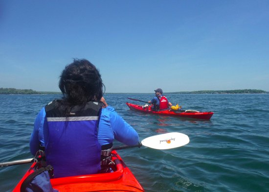 Harraseeket Inn: Our fun kayaking trip at the L.L. Bean Discovery Center