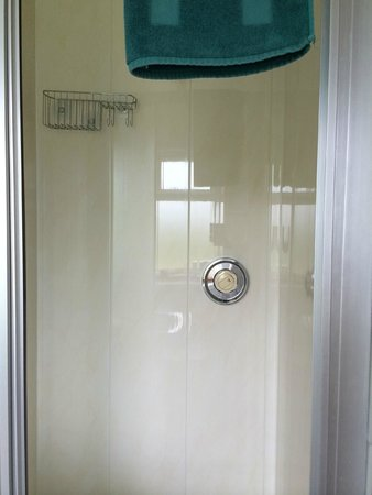 Milestone House : Shower