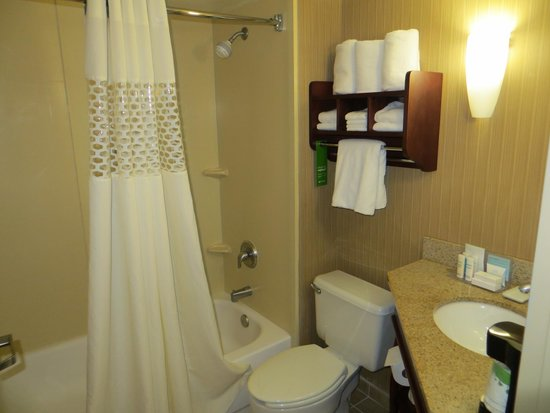 Hampton Inn Dallas / Addison: Bathroom and sink