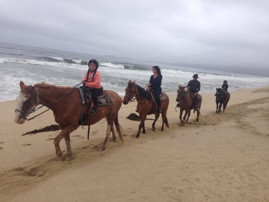 Sea Horse Ranch: Family & I Horseback ridding
