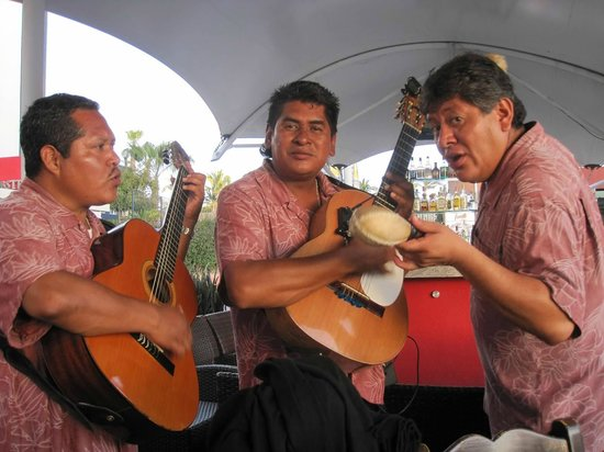 Baja Lobster Company: serenade