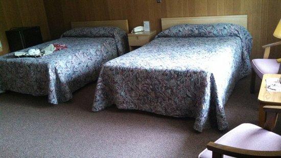 Carl's Rip Van Winkle Motor Lodge: Room (#3)