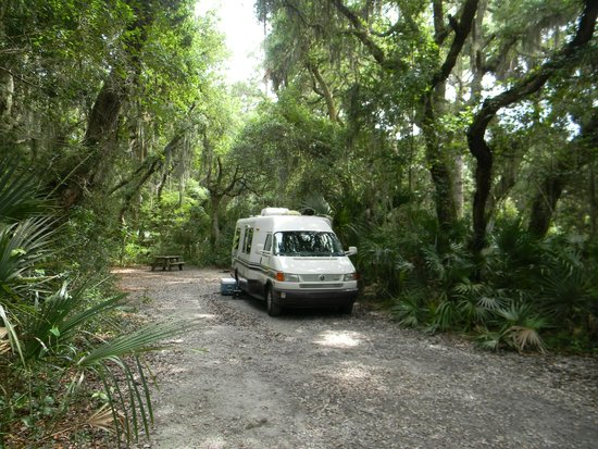 Little Talbot Island State Park: shaded tree lined campsite