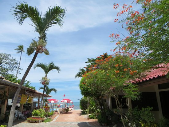 P&P Samui Resort: Lovely hotel grounds