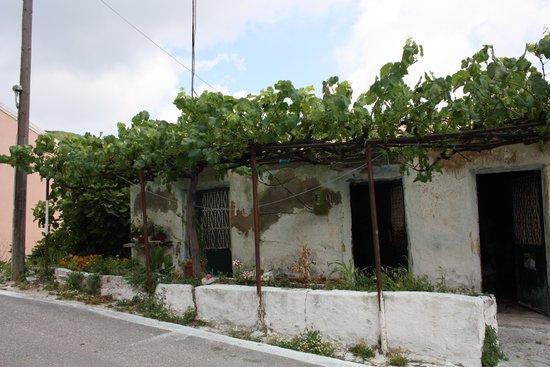 Pelagos Apartments: Prachtig oud nog bewoond huisje