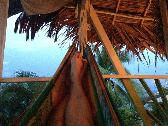 Hotel Valparaiso : Swinging in the hammock.