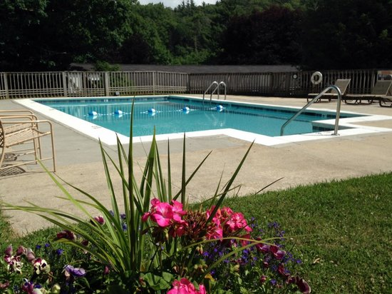 Alpen Acres Motel: Heated outdoor pool