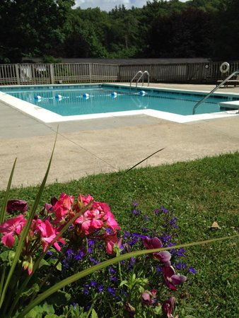 Alpen Acres Motel: Relax by the pool