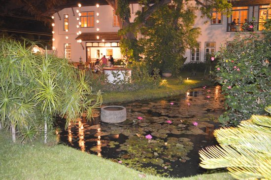 Old Harbour Hotel : Grounds - outdoor