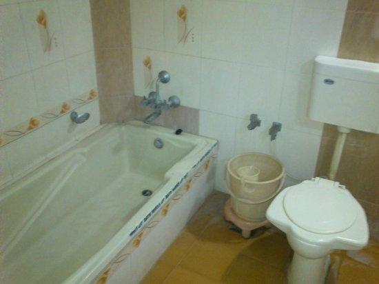 Rudra Regency & Vista Rooms: Bath tub