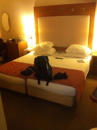Atrion Hotel : chambre double standard