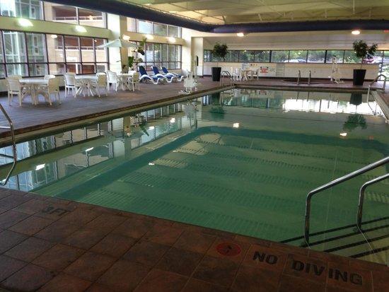 Renaissance Asheville Hotel : Huge heated pool