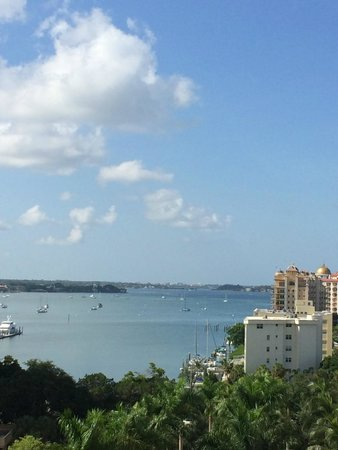 The Ritz-Carlton, Sarasota: View from our hotel room