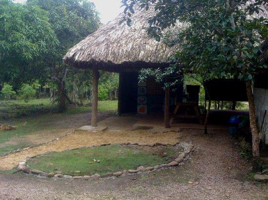 Yaxche Jungle Camp: Reception area