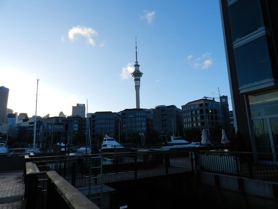 Sofitel Auckland Viaduct Harbour: Harbour view from the Sofitel