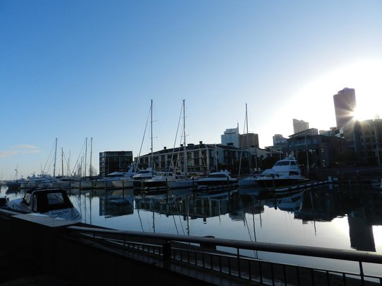 Sofitel Auckland Viaduct Harbour : Harbour view from the Sofitel