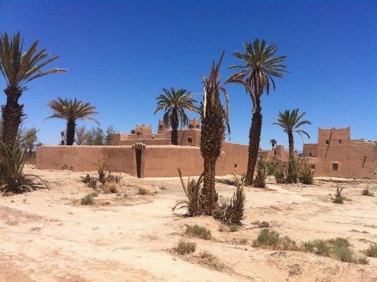 Maison D'hotes Dar Ikram: Skoura la palmeraie et la kasbah