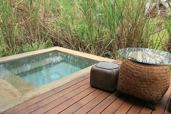 Jetwing Vil Uyana: Plunge Pool - Paddy Dwelling