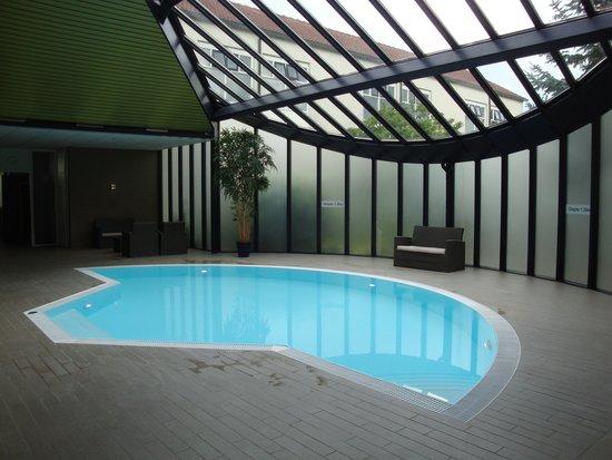 Sandton Hotel De Roskam: Het zwembad(je)