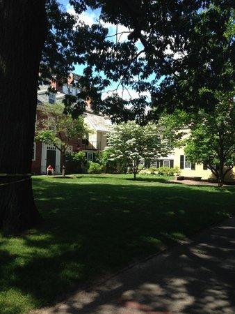 The Hahvahd Tour: Harvard Tour