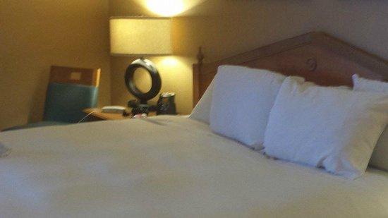 Embassy Suites by Hilton Myrtle Beach-Oceanfront Resort: Bedroom!
