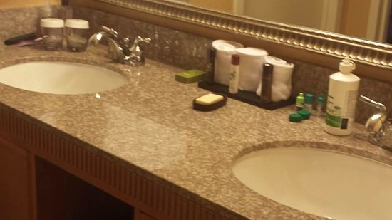 Embassy Suites by Hilton Myrtle Beach-Oceanfront Resort: Bathroom all granite!