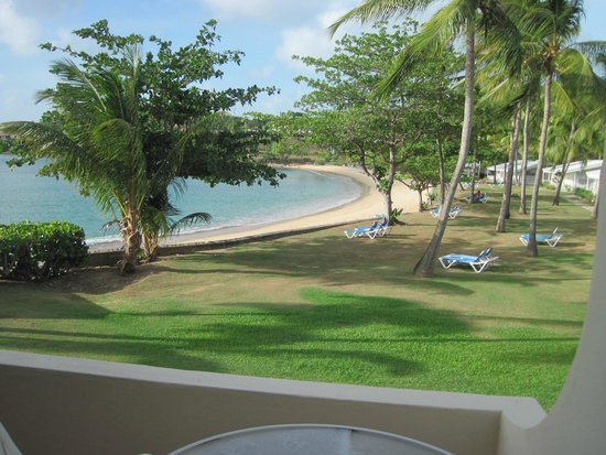 Hawksbill by Rex Resorts: looking out onto sea grapes beach