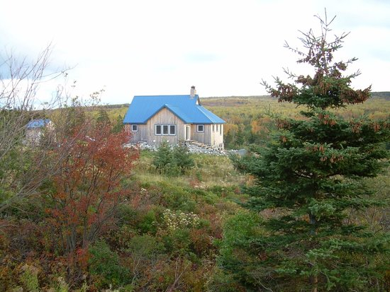 Blue Tin Roof Bed & Breakfast: Blue Tin Roof B&B