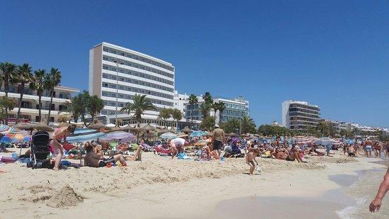 Protur Atalaya Apartamentos : View of Beach