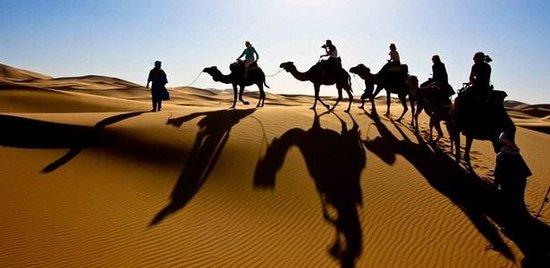 Discover Morocco Tours: Erg chbbi Camel trek