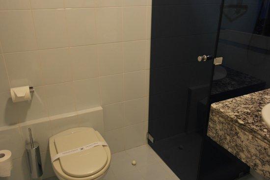Hotel Desenzano: Toilet and shower