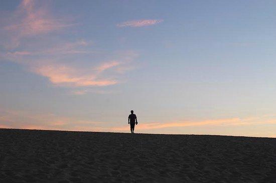 Jockey's Ridge State Park: sunset