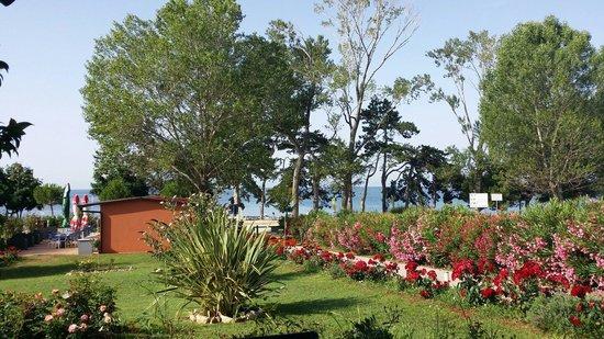 Villa Rosetta Hotel: Rose.etta