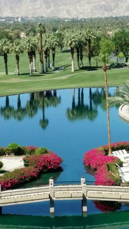 JW Marriott Desert Springs Resort & Spa : A view from my room.