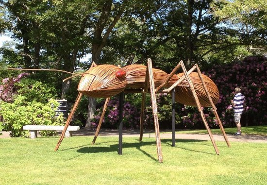Heritage Museums & Gardens : Big ant
