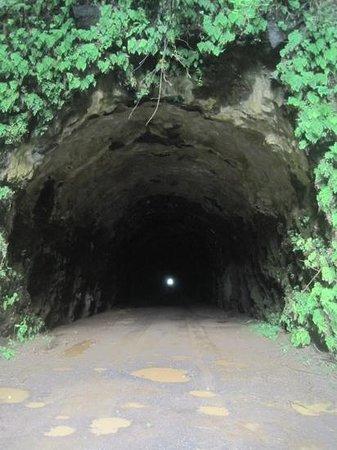 Kauai ATV : Wilcox Tunnel