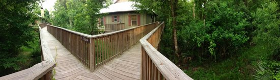 Palmetto Island State Park : walkway to cabin 3 & 4
