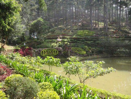 Linh Phuoc Pagoda: Парк