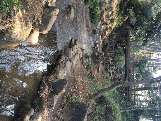 Arisugawanomiya Memorial Park: Arisugawa Park, near Hiroo Station, Tokyo