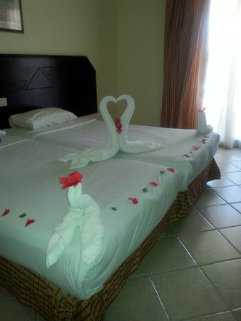 Island Garden Resort: Thanks cleaner :)