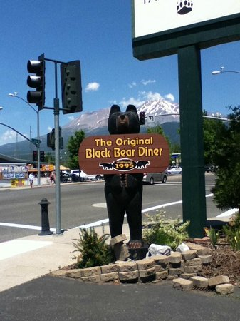 Black Bear Diner - Mt. Shasta : Black Bear - Mount Shasta