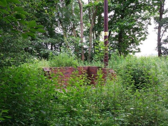 Attingham Park: WWII remains