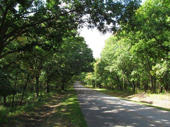 Road inside Nine Eagles State Park