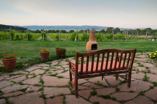 Leroux Creek Inn : overlooking vineyard