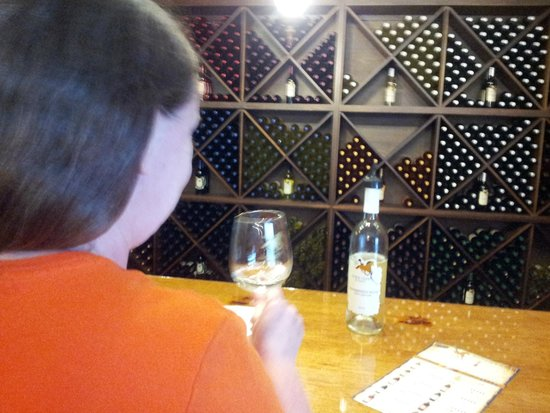 Horse Creek Winery: The Tasting Room